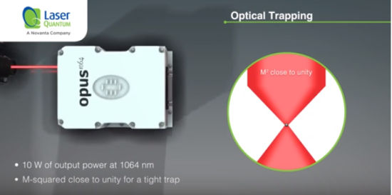 Optical trapping image