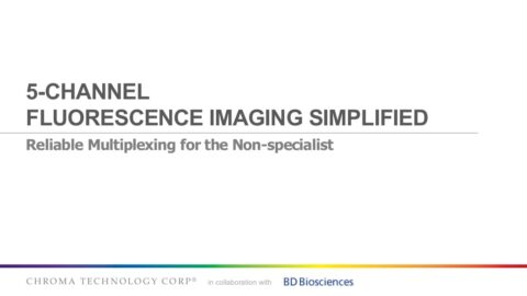 5 Channel Fluorescence Imaging Simplified image