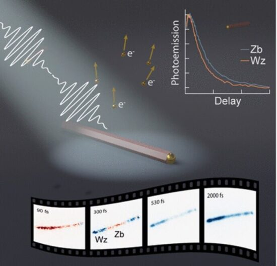 Image for Unraveling Ultrafast Hot Electron Dynamics