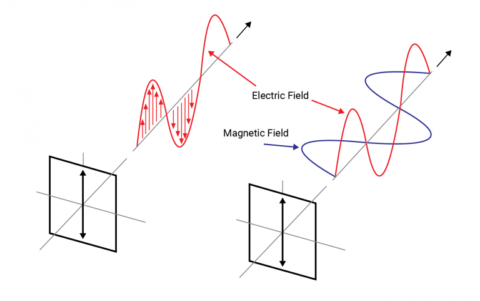 Image for linearly polarised electromagnetic wave
