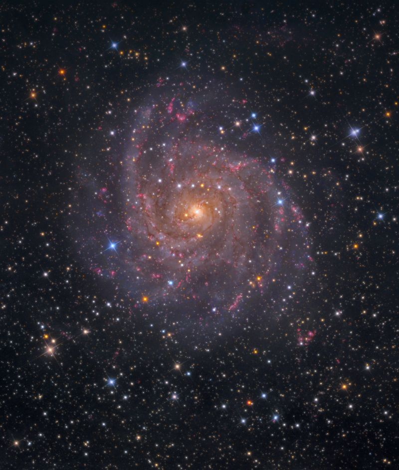 IC 342 photo
